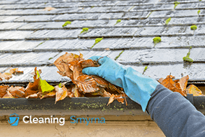Gutter Cleaning Services Smyrna